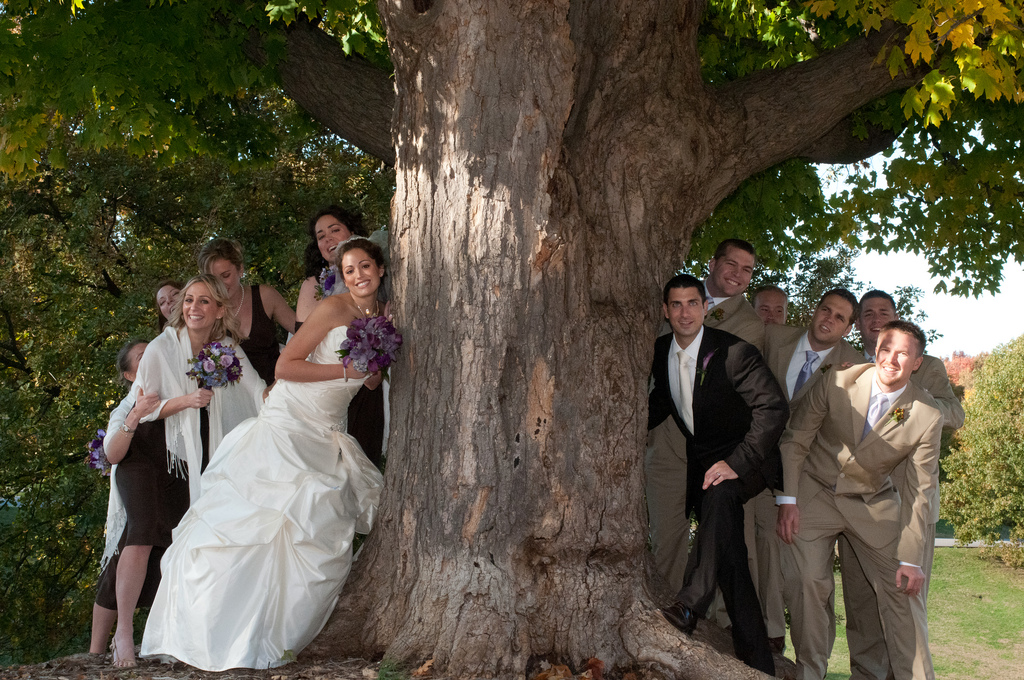 tree_wedding