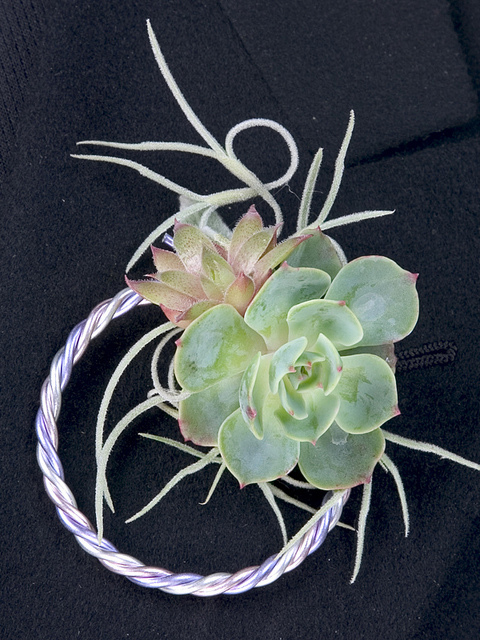 wedding_succulent10