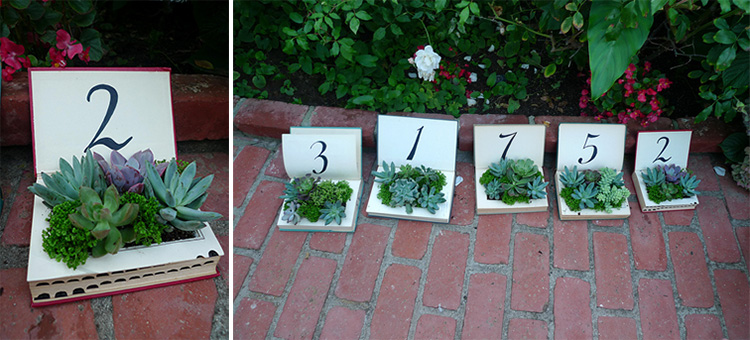 wedding_succulent11